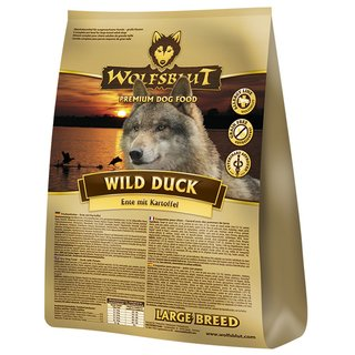 Wild Duck Adult large breed